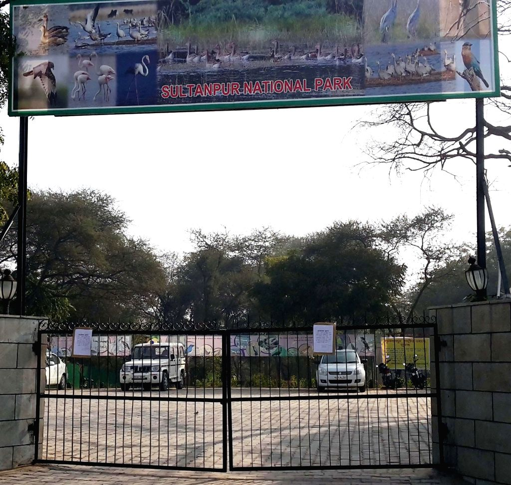 Sultanpur National Park, a bird sanctuary located on Gurgaon-Farrukhnagar Road closed for visitors following death of 45 birds in Gurgaon on Jan 12, 2015.