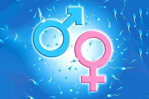 Gurugram health dept busts sex-determination racket in Jhajjar
