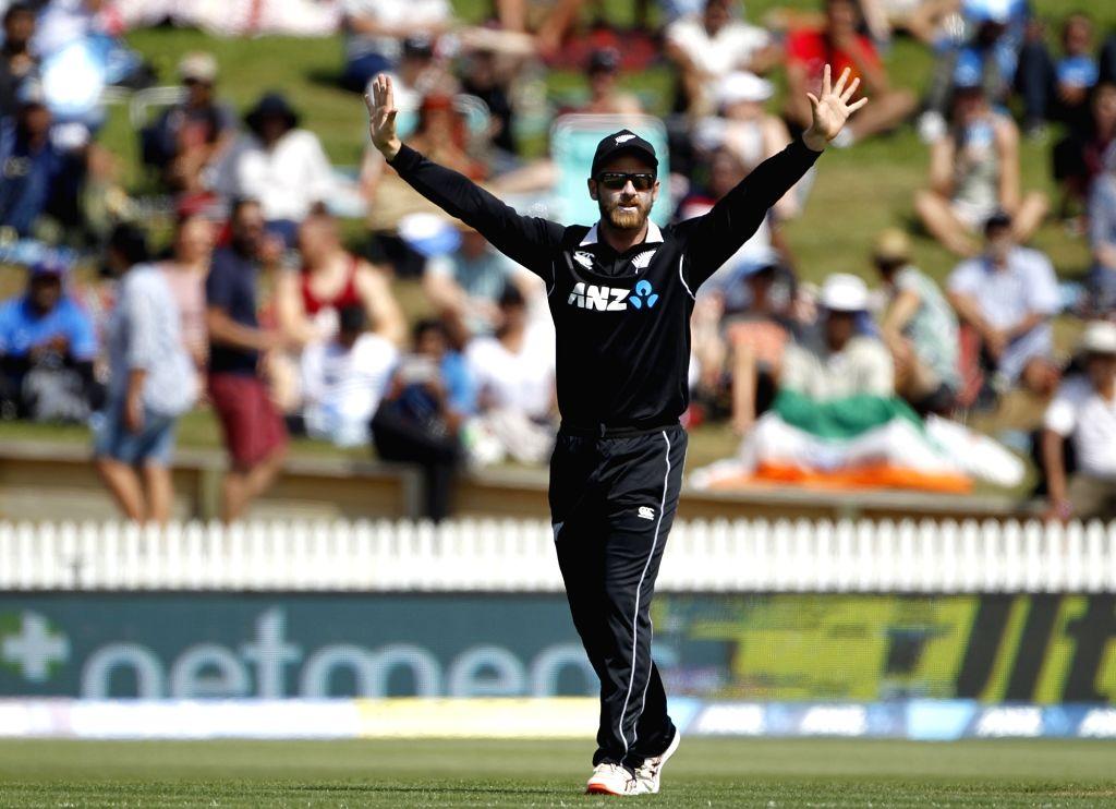 Hamilton (New Zealand) : New Zealand captain Kane Williamson celebrates wicket of Indian batsman Kedhar Jadhav during the 4th ODI cricket match between India and New Zealand played at Seddon Park, ... - Kane Williamson