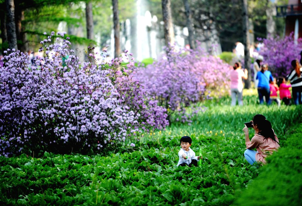 People visit the Heilongjiang Forest Botanical Garden in Harbin, capital of northeast China's Heilongjiang Province, May 1, 2014. Thursday marks the Labor Day. ...