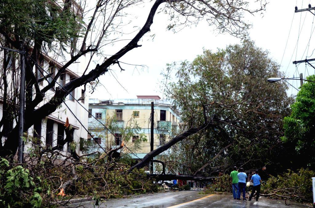 HAVANA, Sept. 11, 2017 - People watch fallen trees on a street after the passage of Hurricane Irma, in Havana, Cuba, on Sept. 10, 2017.