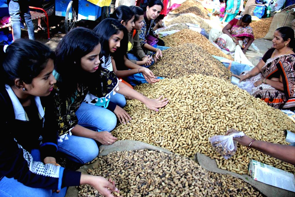 Heaps of groundnuts during Kadalekai Parishe - annual groundnut fair at Bull Temple in Bengaluru's Basavanagudi on Dec 3, 2018.