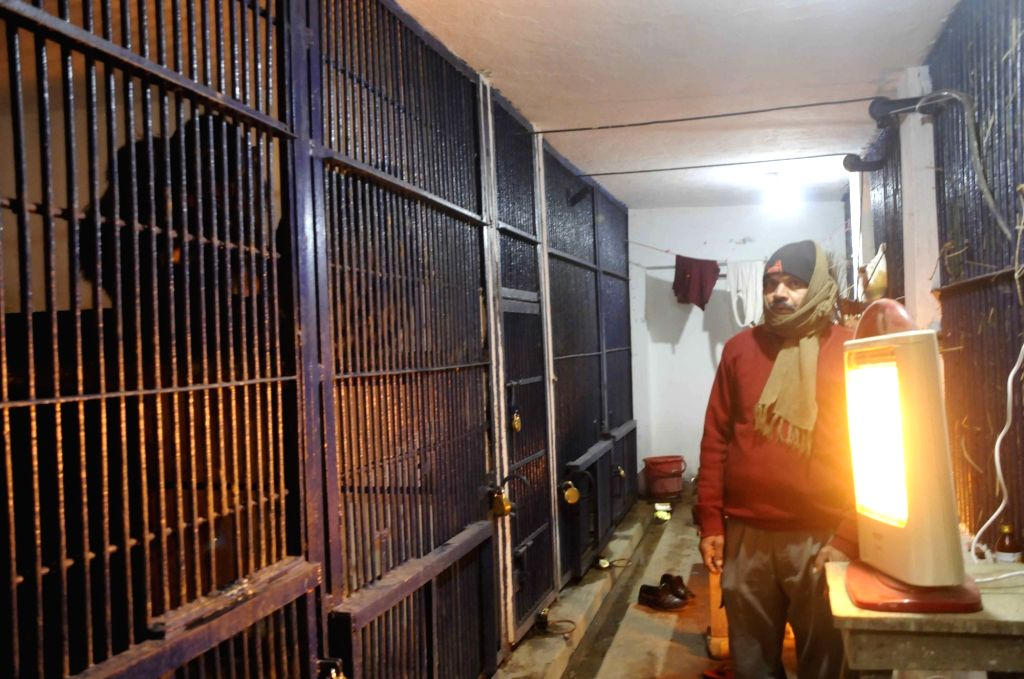 Heater installed outside the enclosure of Chimpanzees during winters at the Sanjay Gandhi Jaivik Udyan in Patna on Jan 10, 2020.
