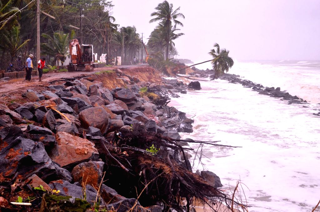 Heavy rains causing sea erosion and damaging roads and coconut tress at Ucchila Someshwara area outskirts of Mangaluru City, in Mangaluru on Aug 11, 2019.