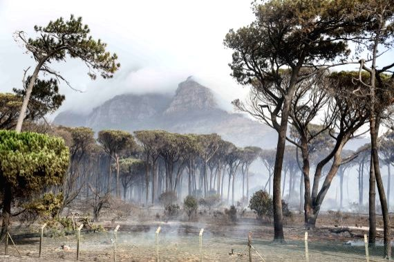 Heavy smoke rises from the Table Mountain national park in Cape Town, South Africa, on April 19, 2021. (Xinhua/Lyu Tianran/IANS)