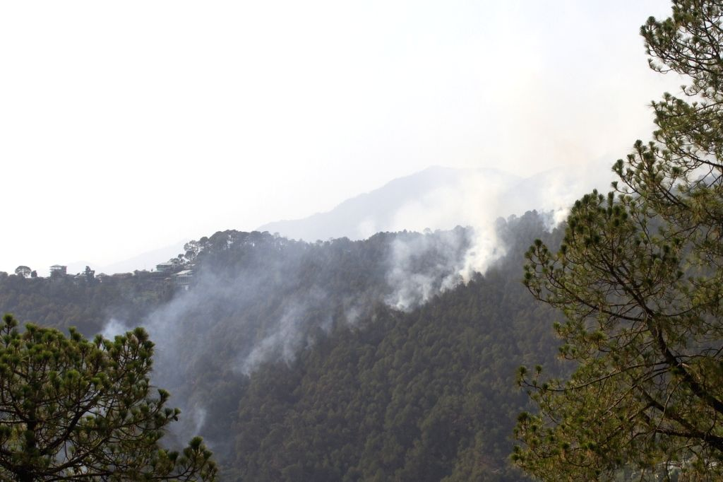 Himachal Pradesh: Fire breaks out in forests of Himachal Pradesh on May 23, 2018.