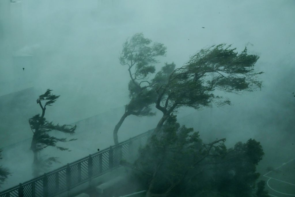 HONG KONG, Sept. 16, 2018 - Photo taken on Sept. 16, 2018 shows trees in the wind on the seaside in Hong Kong, south China. The Hong Kong Observatory issued the No. 10 hurricane signal, the top level ...