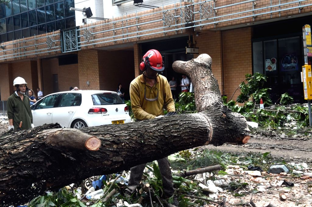 HONG KONG, Sept. 17, 2018 - A worker removes a tree blown down by Super Typhoon Mangkhut in Wan Chai of south China's Hong Kong, Sept. 17, 2018. The Hong Kong government is working to deal with the ...
