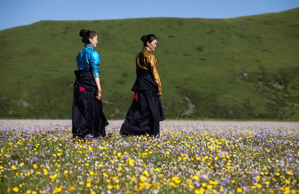 Girls walk among flowers on the Emutang Pasture in Rangkou Township of Hongyuan County, southwest China's Sichuan Province, June 19, 2014.  (Xinhua/Jiang ...