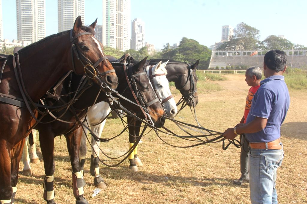Horses with their grooms on the Polo Grounds - ARC - 2020.
