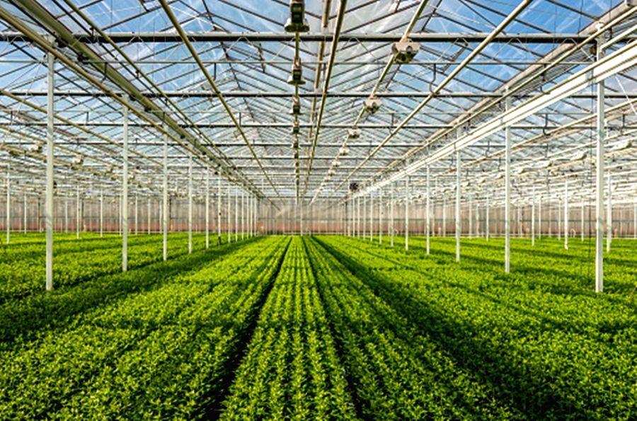 horticulture production.(photo:Pixabay.com)