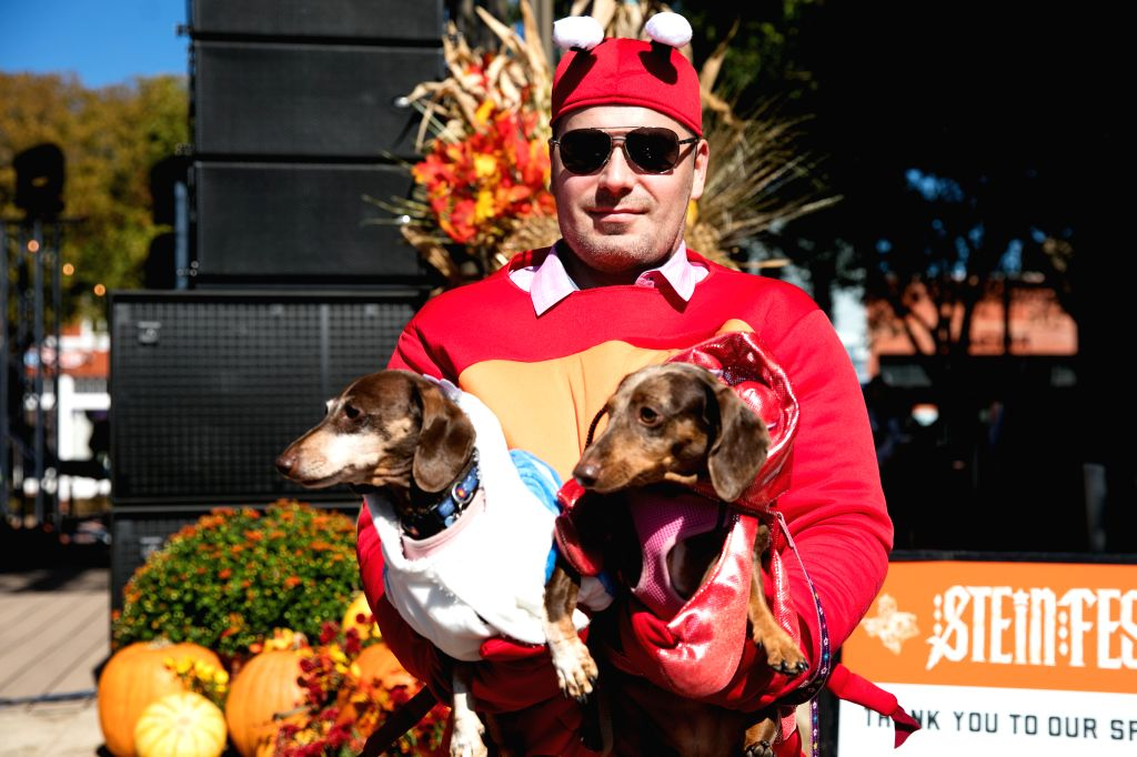 HOUSTON, Oct. 27, 2019 - A man holding two dogs prepares for the dog costume contest at the Steinfest in Plano, Texas, the United States, on Oct. 26, 2019. Steinfest is an Oktoberfest-style event ...