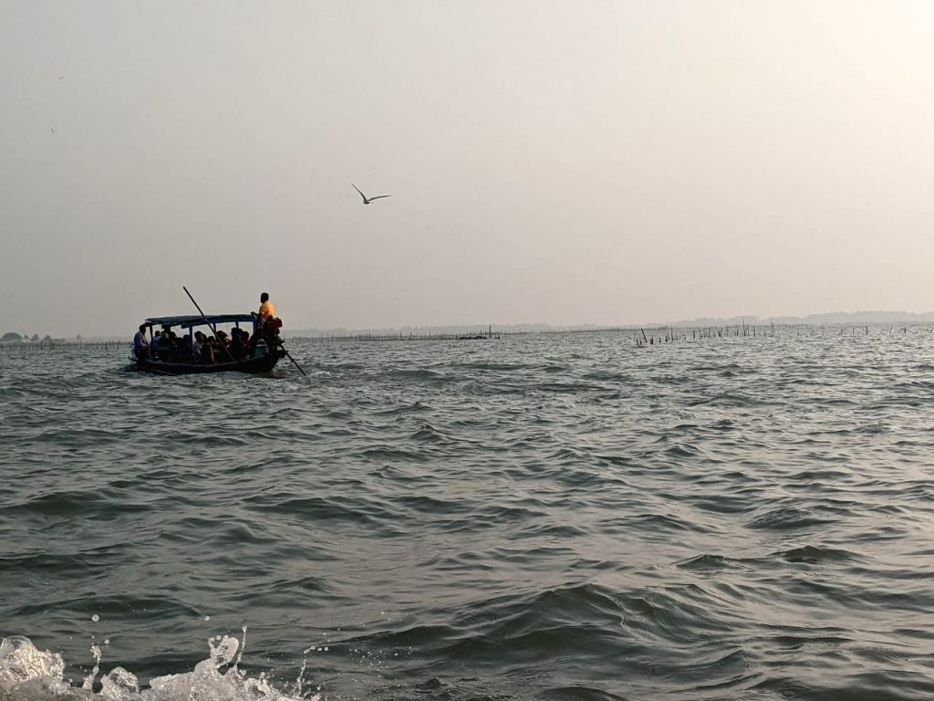 How Dolphins are anchoring tourism at Chilika lake in pandemic times