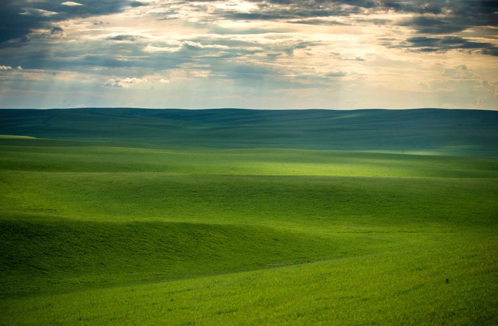 Photo taken on June 17, 2014 shows the scenery of Hulun Buir grassland, north China's Inner Mongolia Autonomous Region. Grass has been flourishing in Hunlun Buir