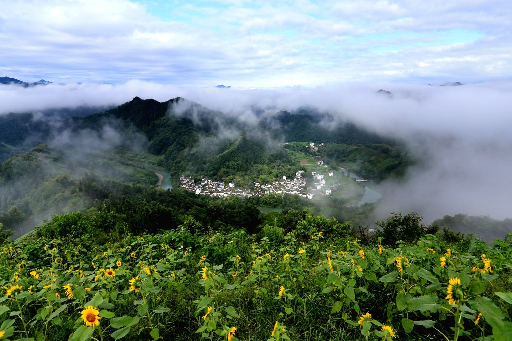 HUNAGSHAN, June 30, 2016 - Houses are enveloped by sea of clouds at Shitan scenic area in Huangshan City, east China's Anhui Province, June 30, 2016.