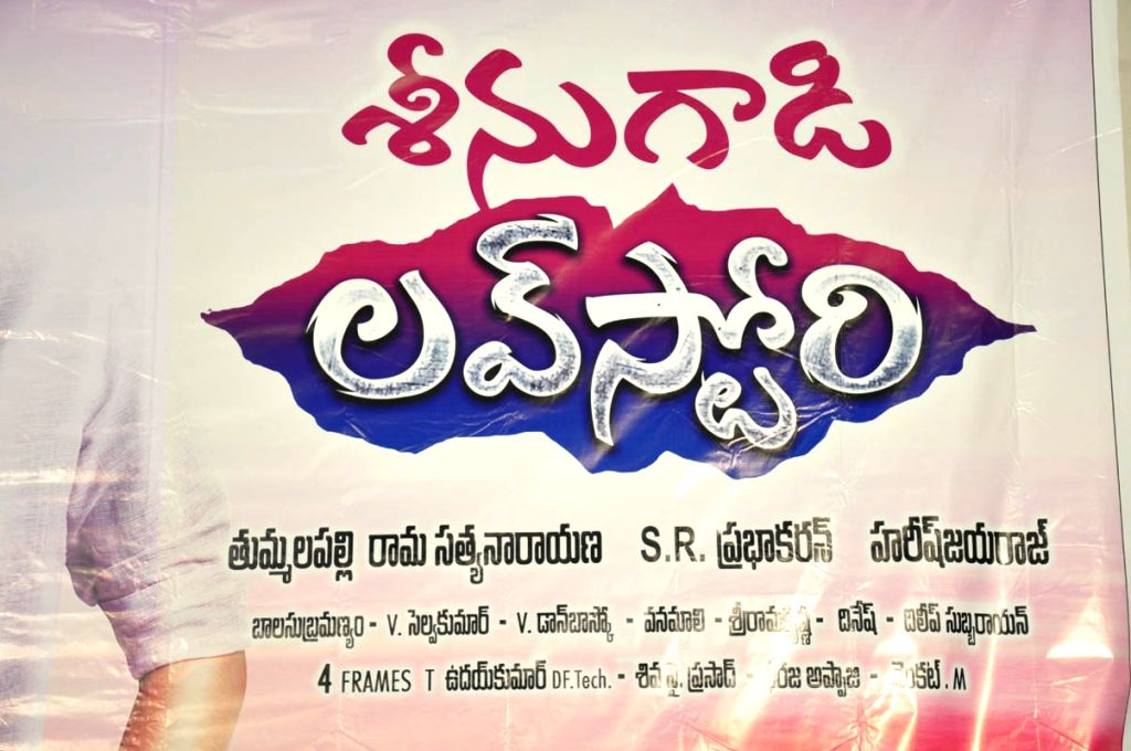 Teaser launch of film Seenugadi Love Story.