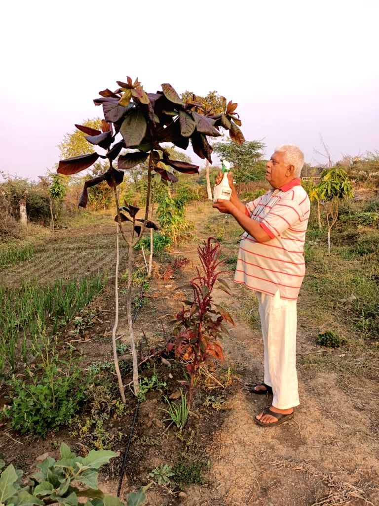 In the Corona period, the leader learned the tricks of farming