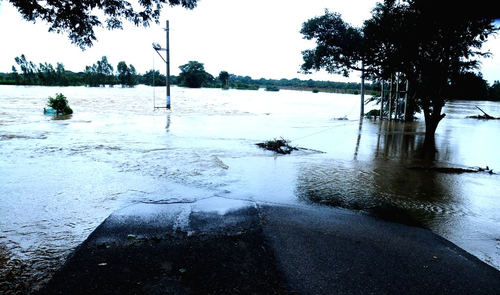 Incessant rains leave Karnataka's Mysuru inundated, on Aug 10, 2019.