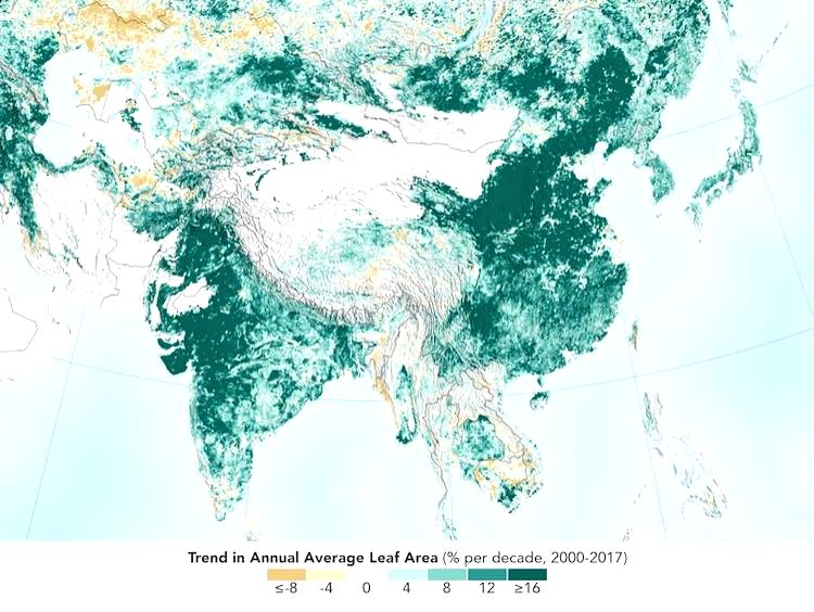 India and China are leading the way in greening lands, thanks to ambitious tree-planting programs and intensive agriculture in both countries. (Photo Credit: NASA)