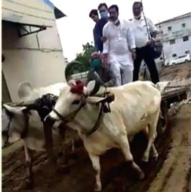 Indore: BMW-driven industrialists ride bullock carts.