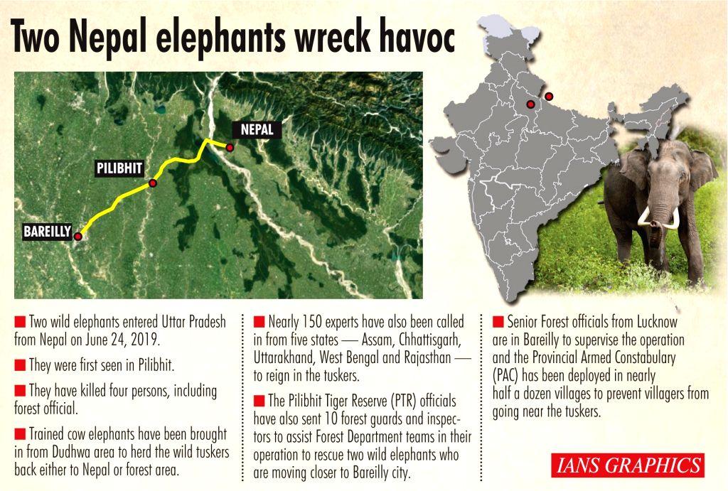 Infographics: Two Nepal elephants wreak havoc. (IANS Infographics)