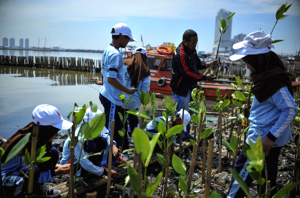 JAKARTA, April 4, 2018 - School children plant Mangrove trees at the Gulf coast of Jakarta, Indonesia, April 4, 2018.