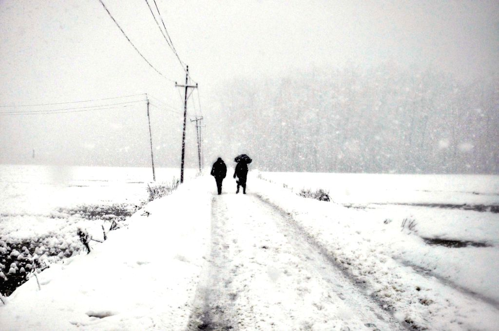 Jammu and Kashmir's Anantnag receives heavy snowfall, on Feb 7, 2019.