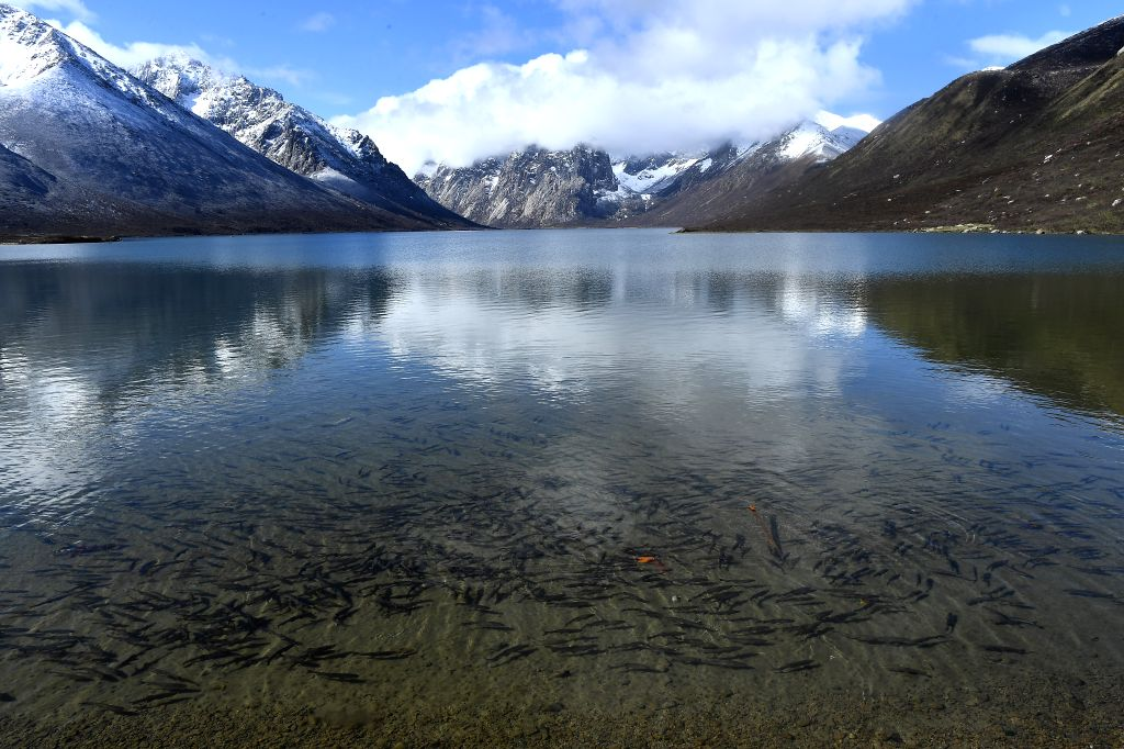 JIUZHI, May 22, 2019 - Photo taken on May 21, 2019 shows the scenery of the Nianbaoyuze Mountain Scenic Resort in Jiuzhi County of the Tibetan Autonomous Prefecture of Golog in northwest China's ...