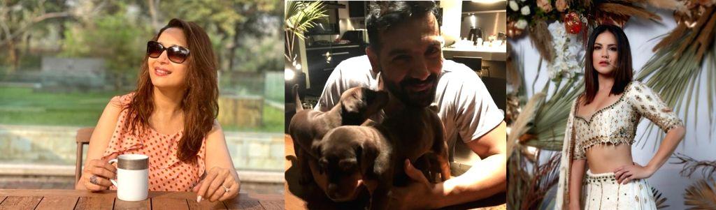 John, Madhuri, Sunny join PETA 20th anniversary celebration.