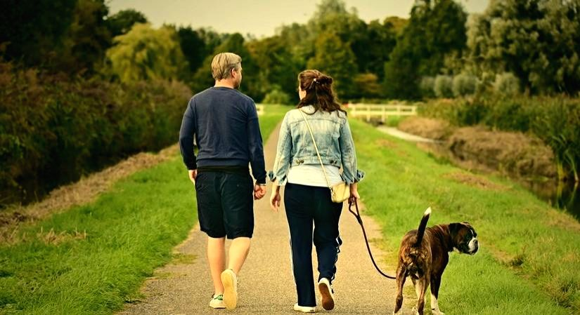 Just become pet parents? Read on to learn how to get it right