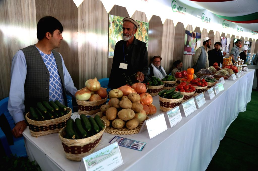 KABUL, Oct. 20, 2016 - Afghan farmers wait for customers during an agriculture exhibition in Kabul, capital of Afghanistan, Oct. 20, 2016. A three-day Afghan agriculture products exhibition kicked ...