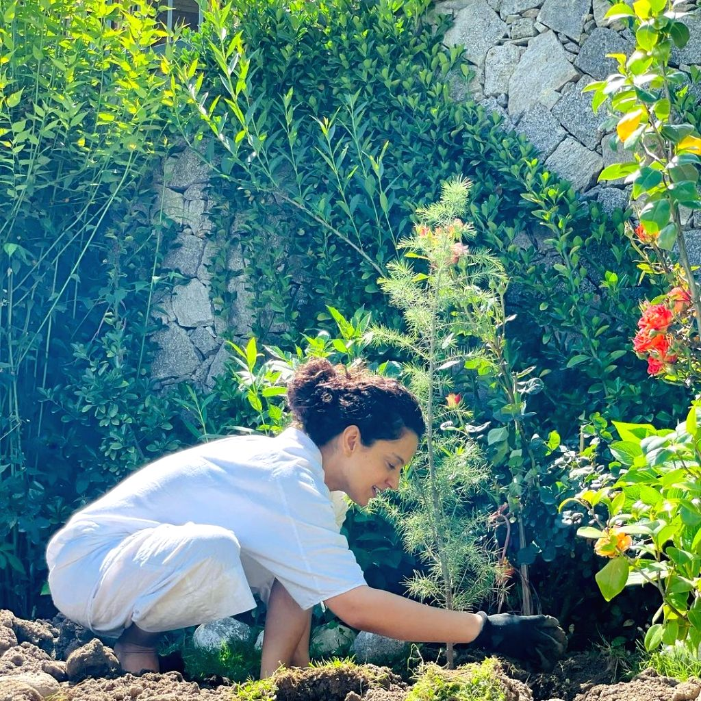 Kangana plants trees in Tauktae aftermath; requests BMC, Gujarat govt to follow suit (photo:Instagram)