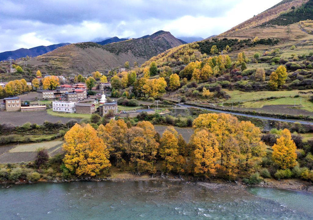 KANGDING, Oct. 17, 2019 - Photo taken on Oct. 16, 2019 shows the autumn scenery of Xinduqiao Town in Kangding, southwest China's Sichuan Province.