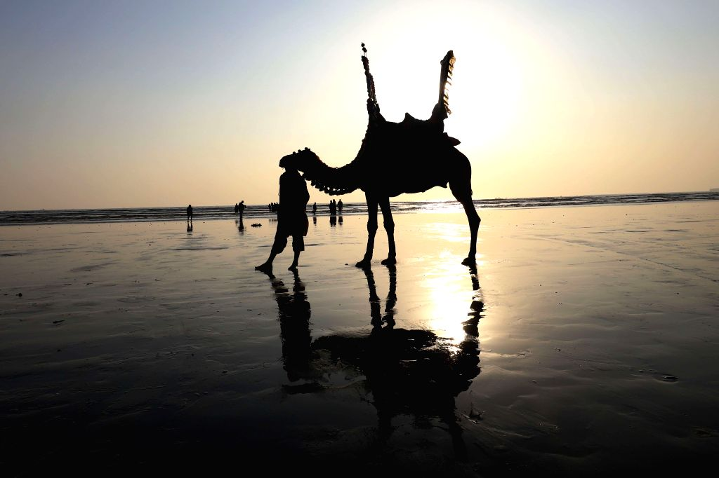 KARACHI, Jan. 26, 2019 - A camel owner waits for customers during sunset at Clifton beach in Karachi, Pakistan, on Jan. 25, 2019.