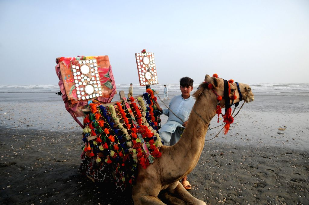 KARACHI, July 4, 2016 - A boy waits for customers besides his camel at Clifton beach in southern Pakistani port city of Karachi on July 3, 2016.