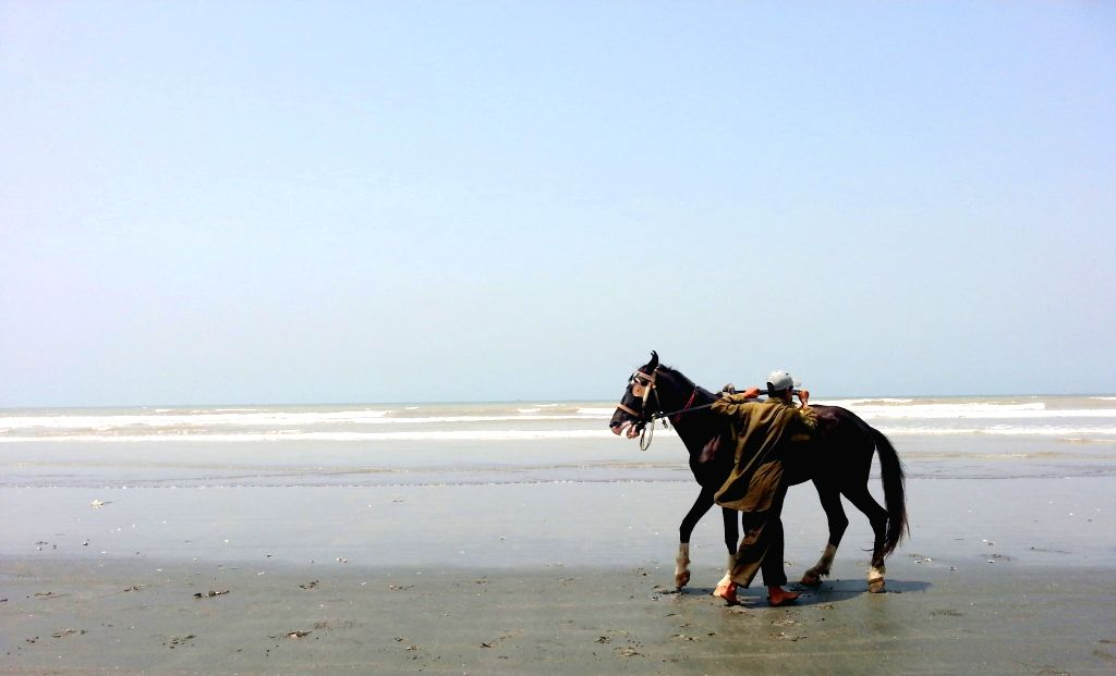 A man tries to control his horse on Clifton beach in southern Pakistani port city of Karachi, May 10, 2014.