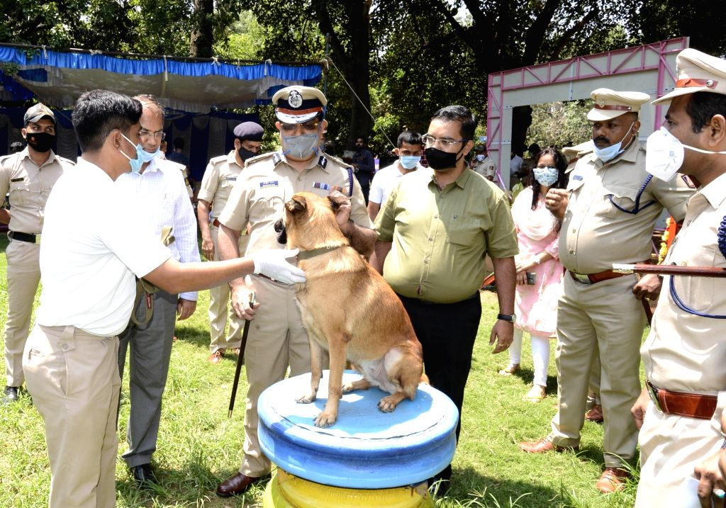 Karnataka Police to induct 50 dogs at Rs 2.5 cr.