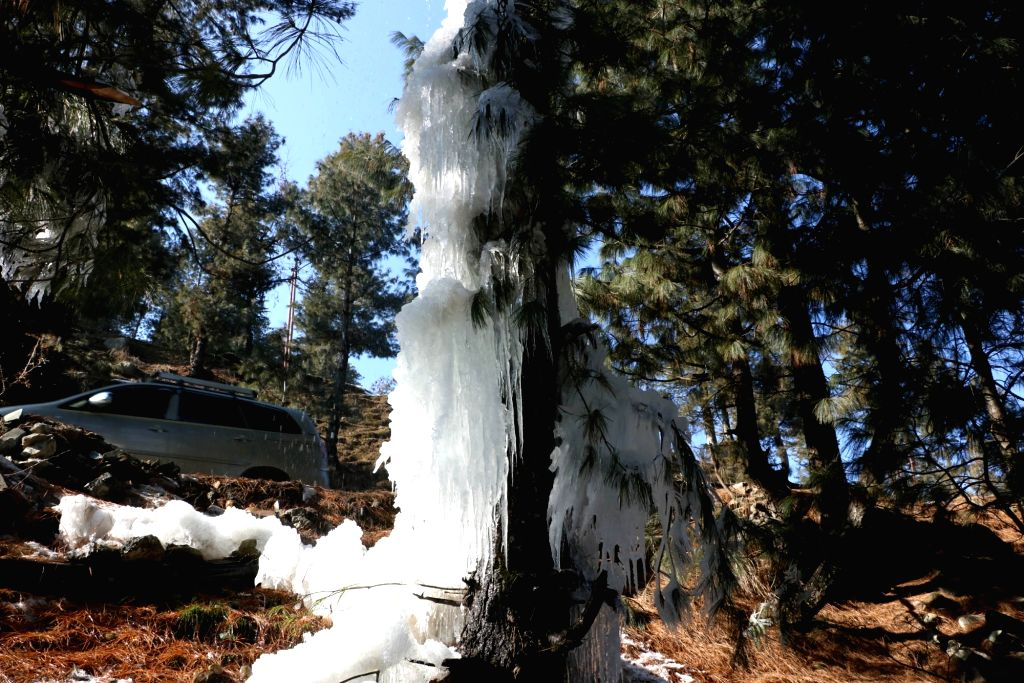 Kashmir Valley : Icicles that were formed from the water leaked from a supply pipeline along Srinagar-Gulmarg road during the 'Chillai Kalan' in Kashmir Valley on Jan 17, 2016.