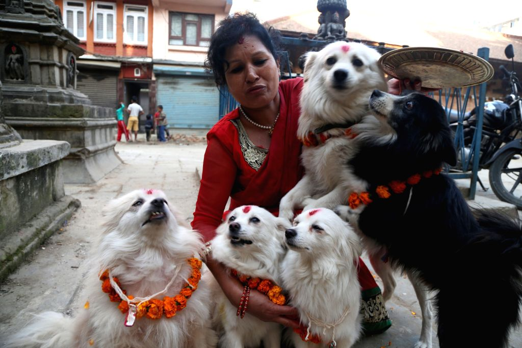 KATHMANDU, Oct. 29, 2016 - A Nepali devotee holds worshipped dogs during Tihar festival in Kathmandu, Nepal, Oct. 29, 2016. The five-day festival in Nepal is held annually and each day is dedicated ...