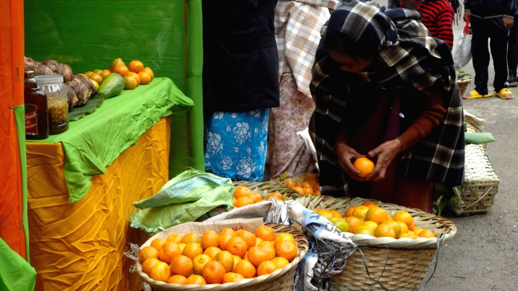 Khasi women sell Mandarin oranges at the Orange Festival organised by The state horticulture department, Synjuk Development for SHG, Nongsteng and Riti Academy of Visual Arts at Sate Central Library .