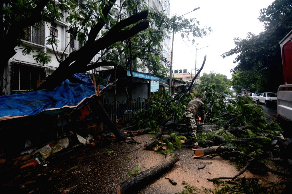 KMC workers with police personnel at work to clean the road due to daily life disrupted during the uprooted tree at major road after the rain  in Kolkata on Sunday 13 June, 2021.