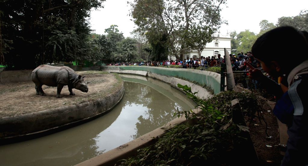 People watch a rhinoceros in its enclosure at the Alipore Zoological Gardens in Kolkata on Jan 1, 2015.