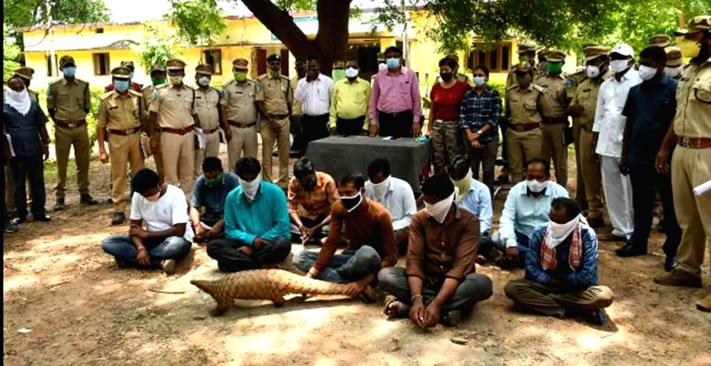 Komaram Bheem: The Forest department authorities busted a 10-member racket involved in poaching and trading of critically endangered Pangolin in Kaghaznagar of Komaram Bheem district of Telangana on ...