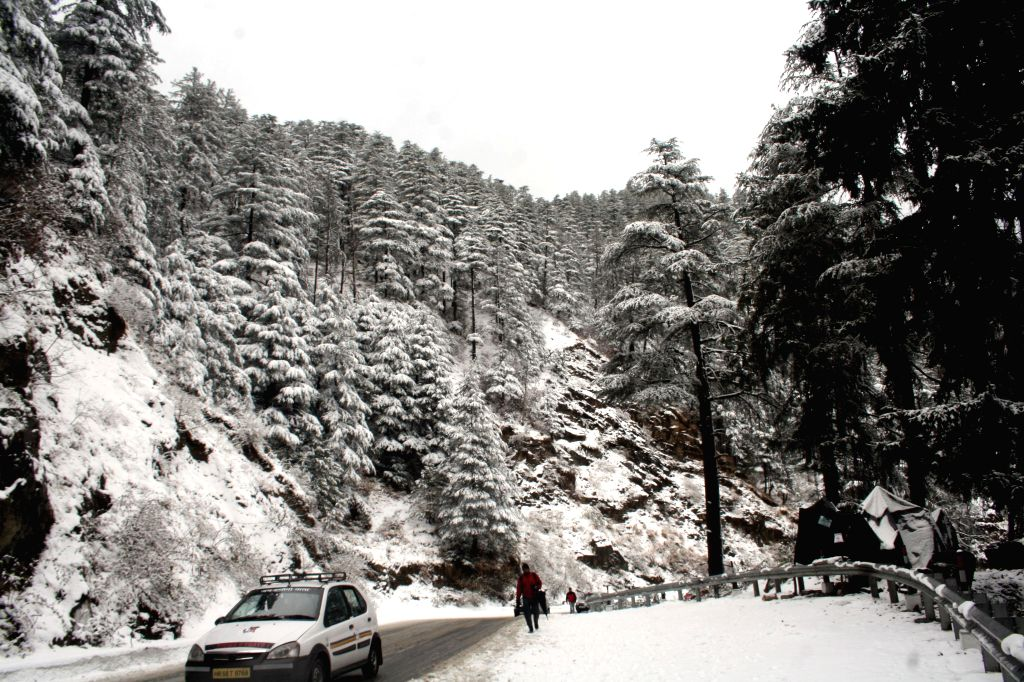A man walks on a snow covered road during season`s first snowfall at Kufri, some 17 Kms Shimla on Dec. 13, 2014.