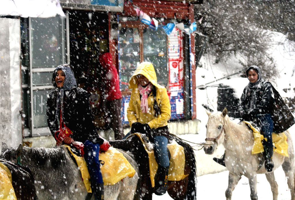 Tourists enjoy horse riding during the season`s first snowfall at Kufri, some 17 Km away from Shimla on Dec. 13, 2014.