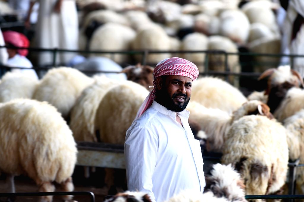 KUWAIT CITY, Aug. 3, 2019 - A seller waits for customers at a sheep market in Al-Jahra Governorate, Kuwait, on Aug. 3, 2019. Kuwaitis prepare to celebrate Eid al-Adha, one of the most important ...