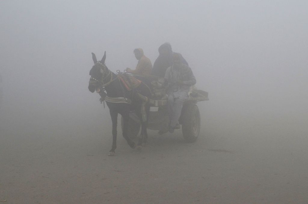 LAHORE, Jan. 24, 2019 - Laborers ride on a horse cart in dense fog in Lahore, east Pakistan, Jan. 24, 2019. Lahore and its surrounding areas were completely blanketed by dense fog on Thursday, ...
