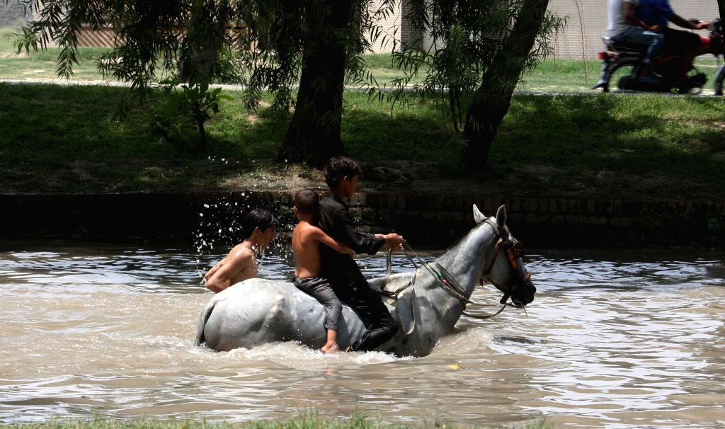 Pakistani boys wade on a horse in a canal during a hot day in east Pakistan's Lahore on July 15, 2014. Temperatures reach over 45 degrees Celsius in many parts of ...