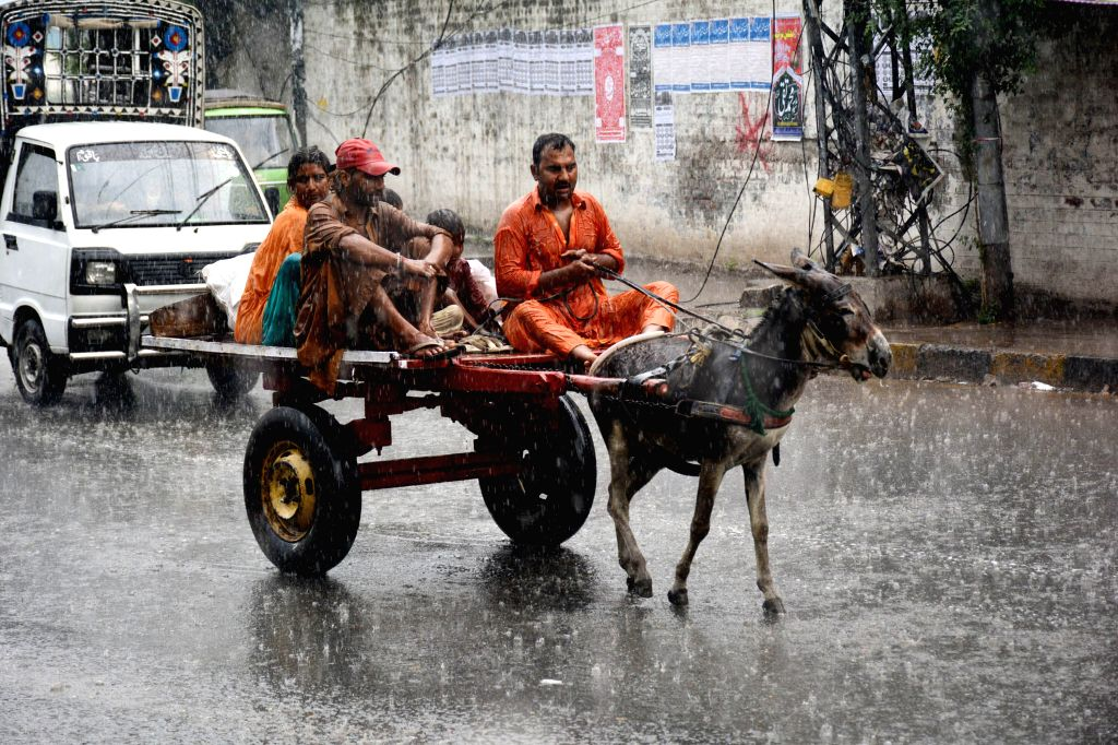 LAHORE, Sept. 20, 2016 - A family ride on a donkey-cart during heavy rain in eastern Pakistan's Lahore, Sept. 20, 2016.