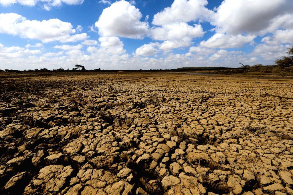 LAIKIPIA (KENYA), March 1, 2017 Photo taken on March 1, 2017, shows a dried-up pond in Laikipia County, Kenya. The UN Food and Agriculture Organization (FAO) has warned that Kenya was ...